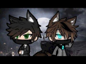 loup garçons - ce sont deux loups et ils sont frères