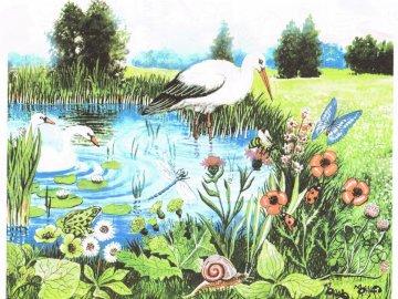 Wiosenne puzzle - Ułóż wiosenne puzzle