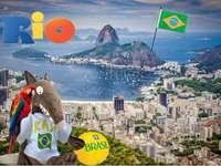 учащ се - Люпиново пътуване до Бразилия