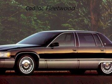 cadilaczek - Cadillac fleetwood terminó la producción mi fondo