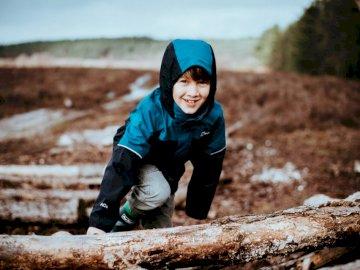 Ten chłopiec, który pojawia się w wielu - Chłopiec, wspinaczka na pniu drzewa. New Forest National Park, Wielka Brytania
