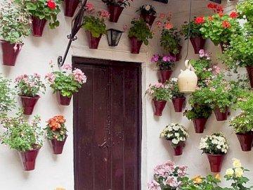 Hiszpańskie patio - Hiszpańskie patio , festiwal , Kordoba
