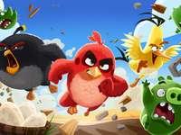 Kleurrijke vogels, Angry Birds - Vogels uit de film Angry Birds