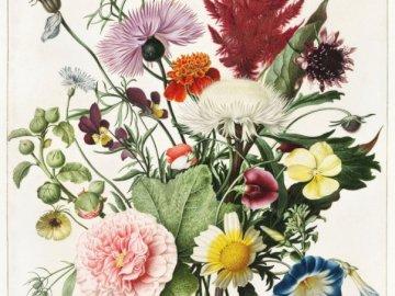Bouquet of wild flowers - Artistic flower bouquet