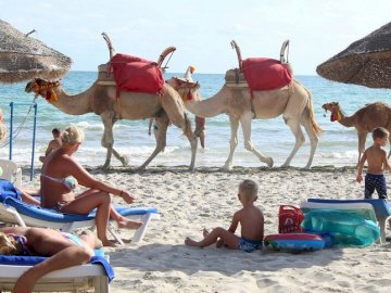 Tunisia.. - walking camels on the beach