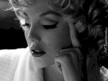 Marilyn Monroe - Please divide the images into a thousand elements