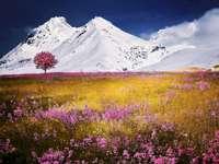 Panorama dos Alpes - montanhas neve céu -----------