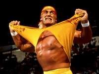 Hulk hogan - Hulk Hogan arrachant sa chemise