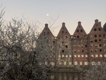 Gdański krajobraz - To piękny mały krajobraz Polski