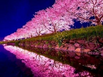 Japon. - Puzzle paysage.