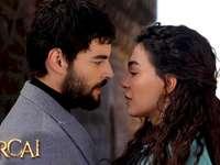 Hercai-Reyyan Miran - Series Turkish-Hercai (Incalculable)