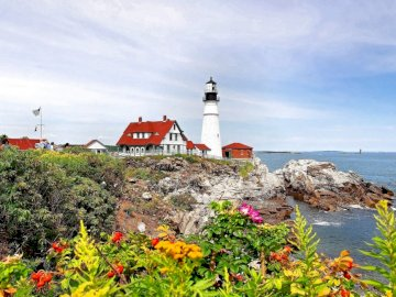 beacon_coast_rocks_flowers_ - beacon_coast_rocks_flowers_