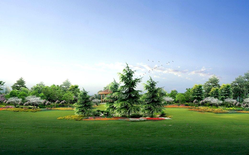 gran träd trädgård (14×14)