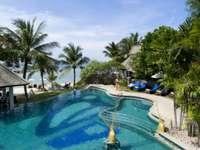 piscina, palmeras, resort, diseño, casa de campo, - piscina, palmeras, resort, diseño, casa de campo, descanso, trópicos