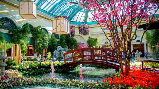 Ботаническа градина 2 - Ботаническа градина 2, Лас Вегас (10×8)