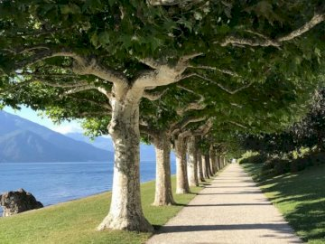 A fairytale path at Lake Como in Italy - oh oh oh oh oh oh oh oh oh