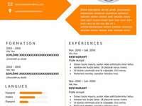 CV šablony