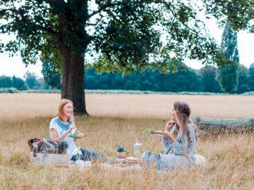 Créer des souvenirs ensemble - Des inconnus assis sur l'herbe brune. Royaume-Uni
