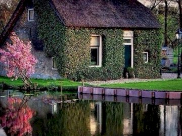 Cottage by the water.