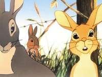 jarní králíci
