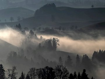 Another winter capture without - Trees and hills with fog. Switzerland