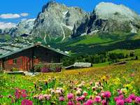 Cottage, meadow, mountains - Cottage, Mountains, Meadow, Flowers