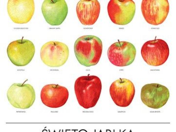 a flock of apples - it's a flock of apples alone