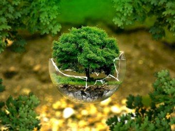 екологичен пъзел