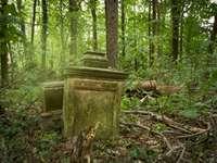 cemitério abandonado - cemitério abandonado em algum lugar encontrado por acidente