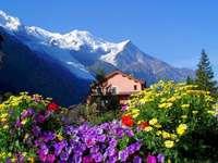 Casa, flori, munți.