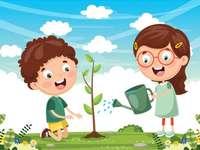 Plantando uma árvore
