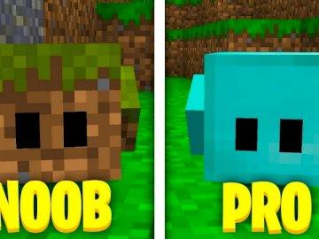 Minecraft pro vs noob - Zięcie pokazuje bloki jeden z ziemi a drugi z diamentów