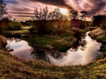 widoczek - rzeka, natura, drzewa