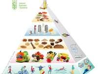 GEZONDE VOEDINGSPIRAMIDE - Een piramide van gezond voedsel voor kinderen en jongeren. Onthoud: we leveren het meeste, wat is he