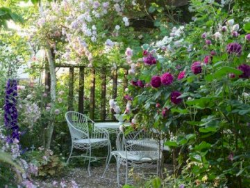In the garden. - Jigsaw puzzle. flowers. Puzzle.
