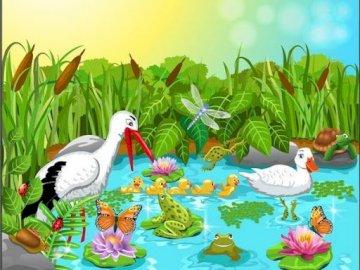Ein Frosch am Teich - Rätsel für Kinder zu lösen.