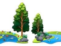 Schone rivier of vuil - ecologie