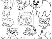 Tiere des Waldes von Lenka