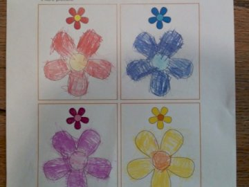 four colorful flowers - four flowers to be colored at will