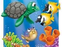 Marina djur - Sätt i pusslet till de marina djur som finns i havet.