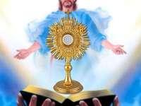 Senhor Jesus Anfitrião - Senhor Jesus escondido no exército. Uma pessoa vestindo uma fantasia.