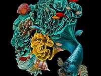 Pesce - Biologia