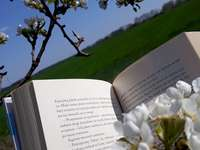 пролетно четене
