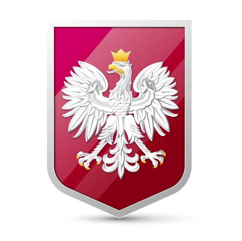 Godło Polski - Ułóż w całość symbol Polski. Zamknięty znak (3×4)
