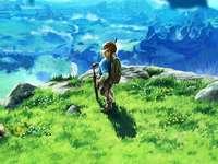 puzzle-ul meu - legenda respirației Zelda a sălbăticiei. O persoană care stă pe un câmp verde luxuriant.
