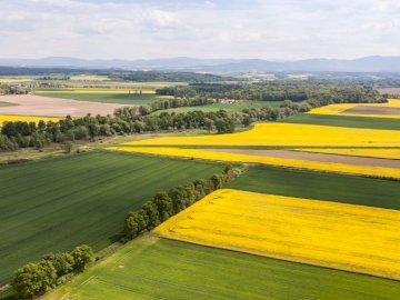 Paisaje polaco - paisajes polaco mar montañas tierras bajas. Un gran campo verde con árboles en el fondo.