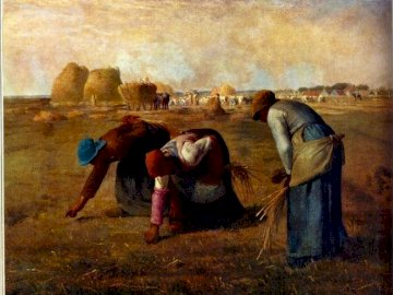 Reapers - Women collecting Millet's ears.