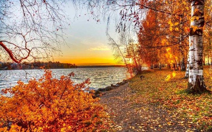 пейзаж, залез - пейзаж, залез, река, бреза. Дърво до водно тяло (9×8)