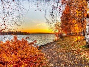 krajobraz , zachód słońca - krajobraz , zachód słońca , rzeka , brzozy. Drzewo obok akwenu.