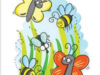 Fiori e api